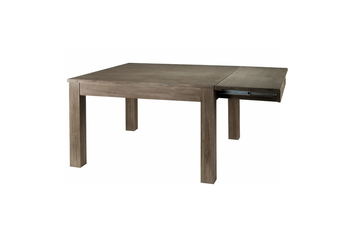 Table carree 120 avec rallonges conceptions de maison for Table carree 120 cm